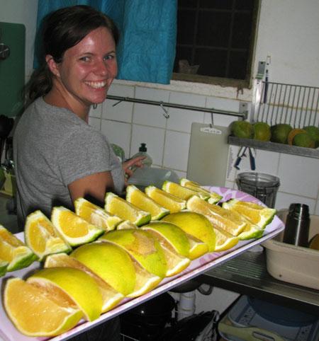 img_4090-fruit.jpg