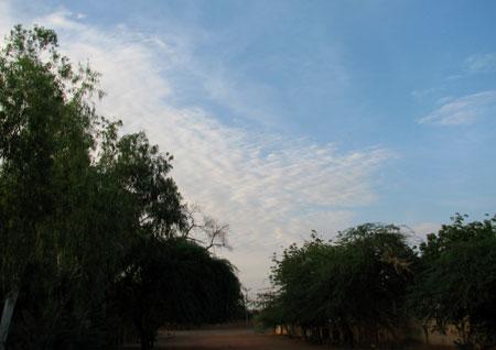 200910-img_6167
